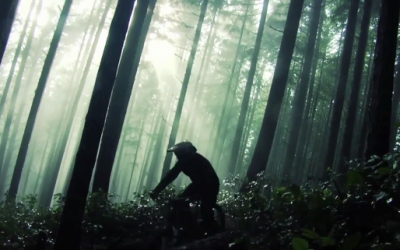 Amazing freeride forest by Aaron LaRocque
